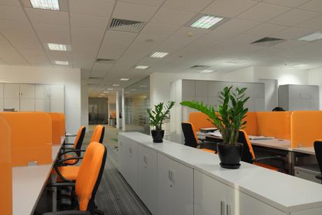 Xu hướng thiết kế nội thất văn phòng hiện nay